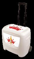 Select 55 28 Quart White Cooler